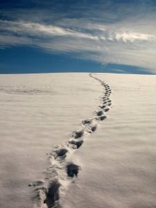 Стъпки в снега
